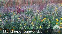 Storchengarten_03