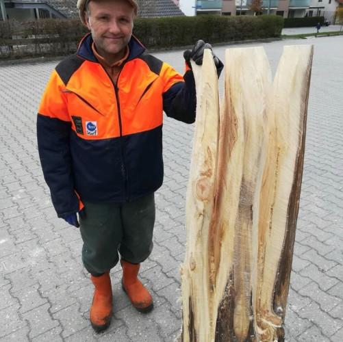 Holzskulptur mit Kettensäge geschnitzt von Stefan Pillokat - KUNSTPFAD